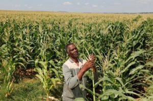 Afrika - Grüner Kontinent im Aufbruch
