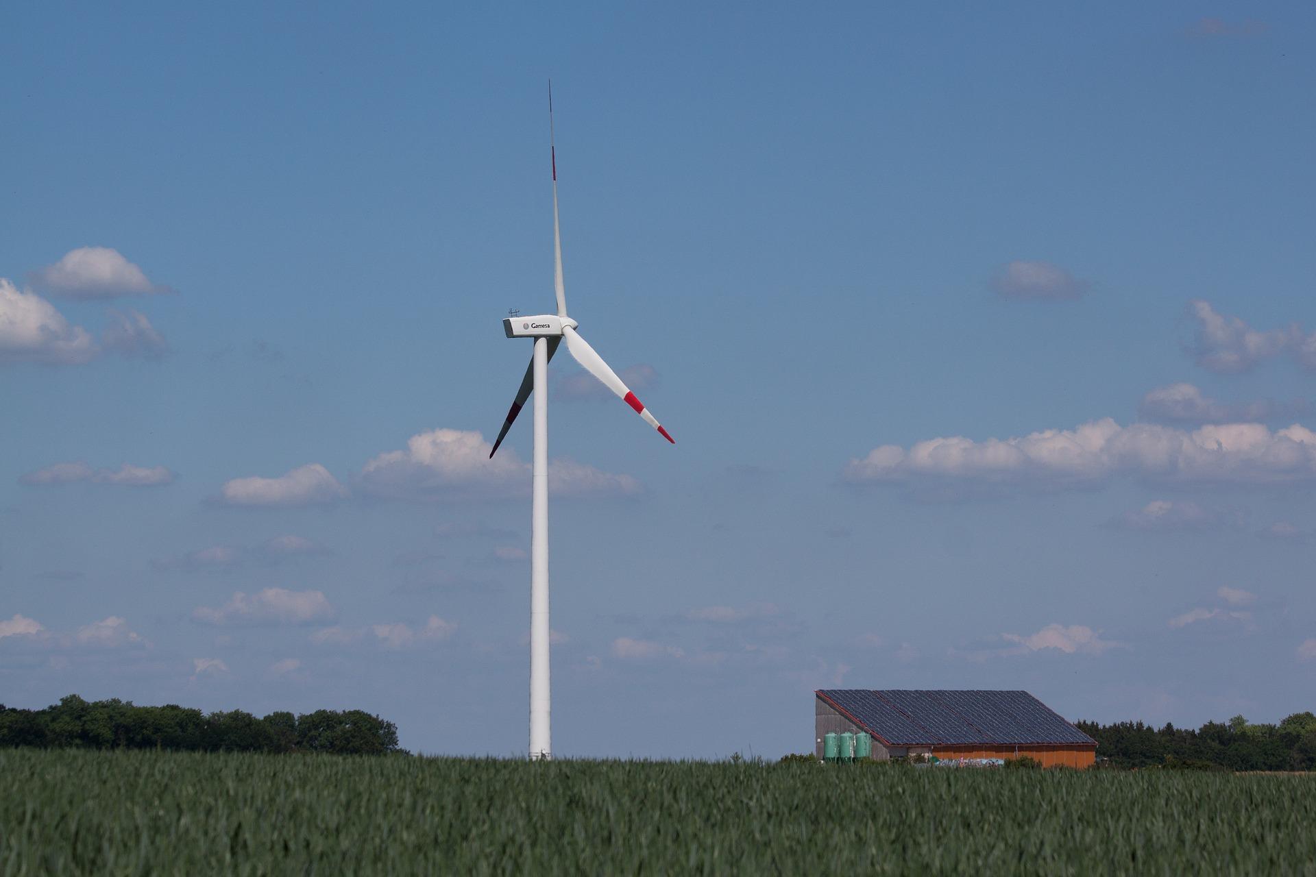 Futuro verde con materie prime per la transizione energetica