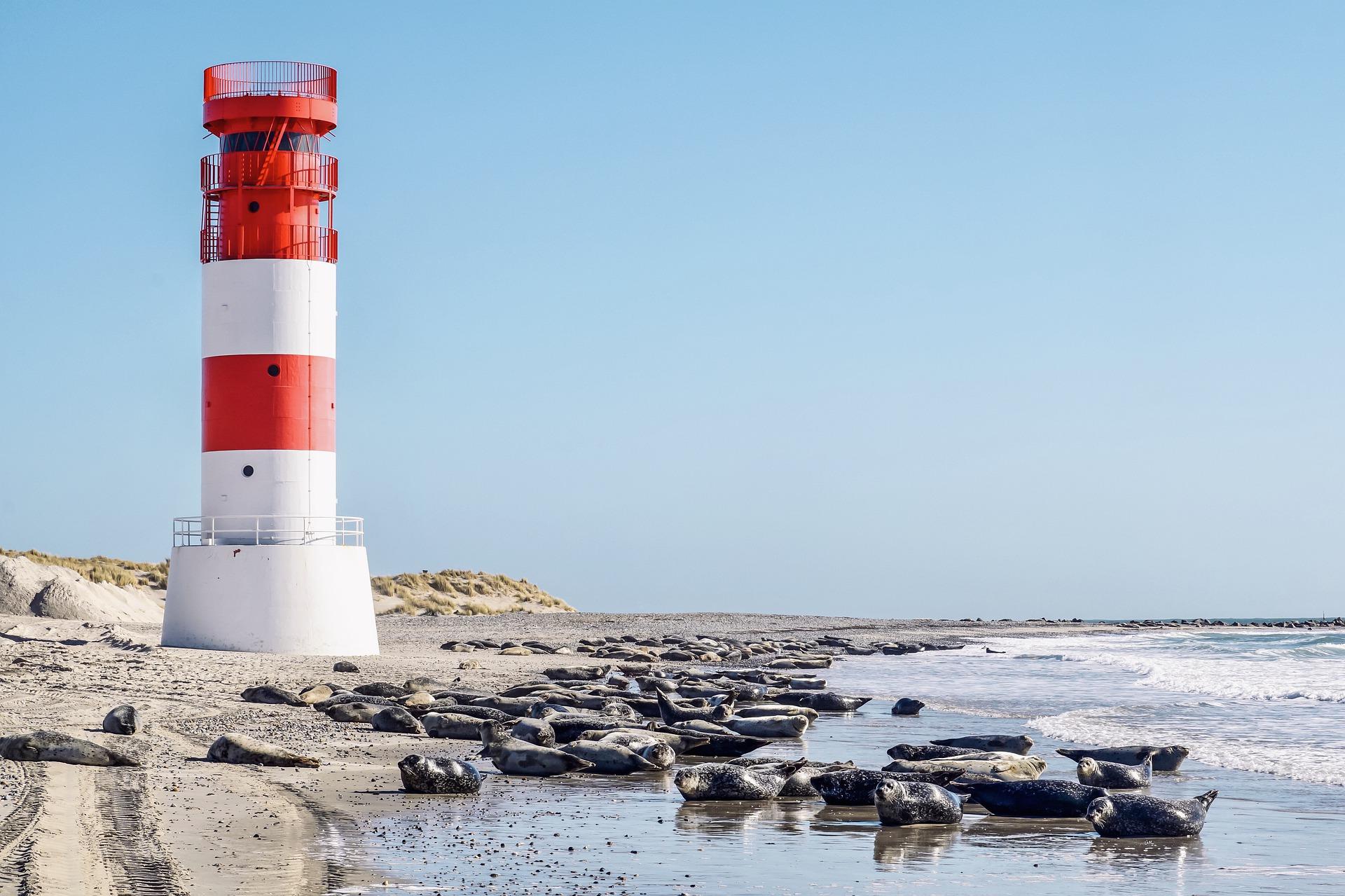 Deutsche Nordsee: Wattenmeer, Nationalpark und Elbmündung